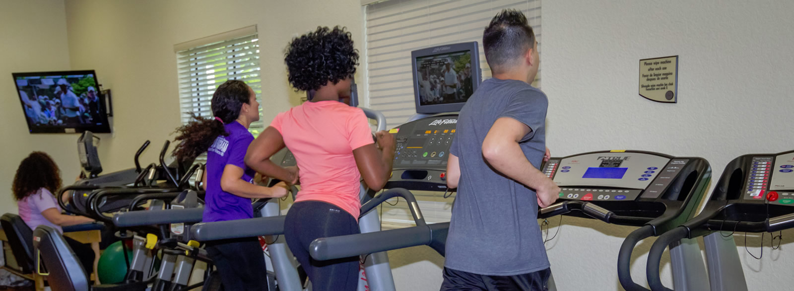 Male and females running on treadmills